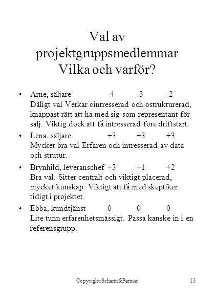 Val av projektgruppsmedlemmar Vilka och varför