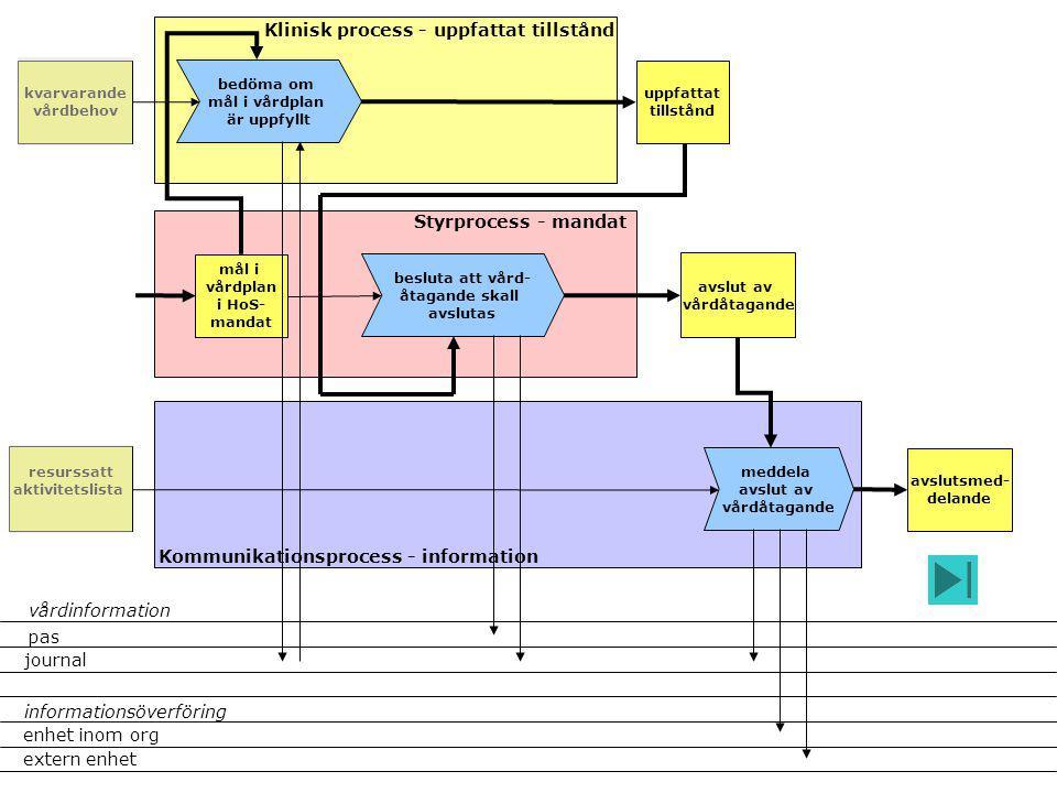 Klinisk process - uppfattat tillstånd