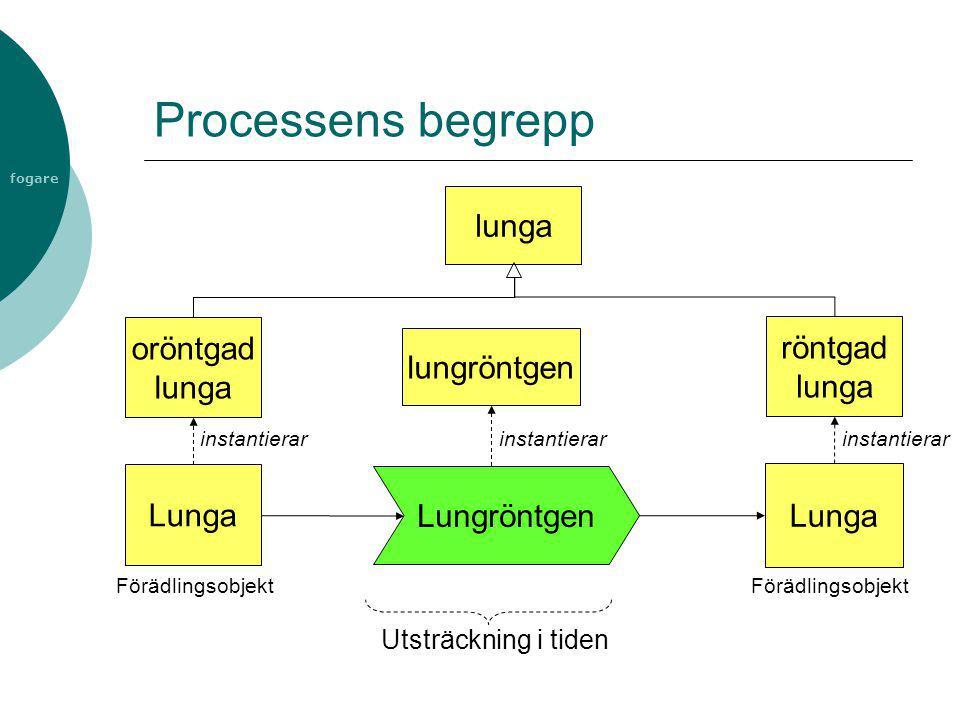 Processens begrepp lunga oröntgad lunga röntgad lunga lungröntgen