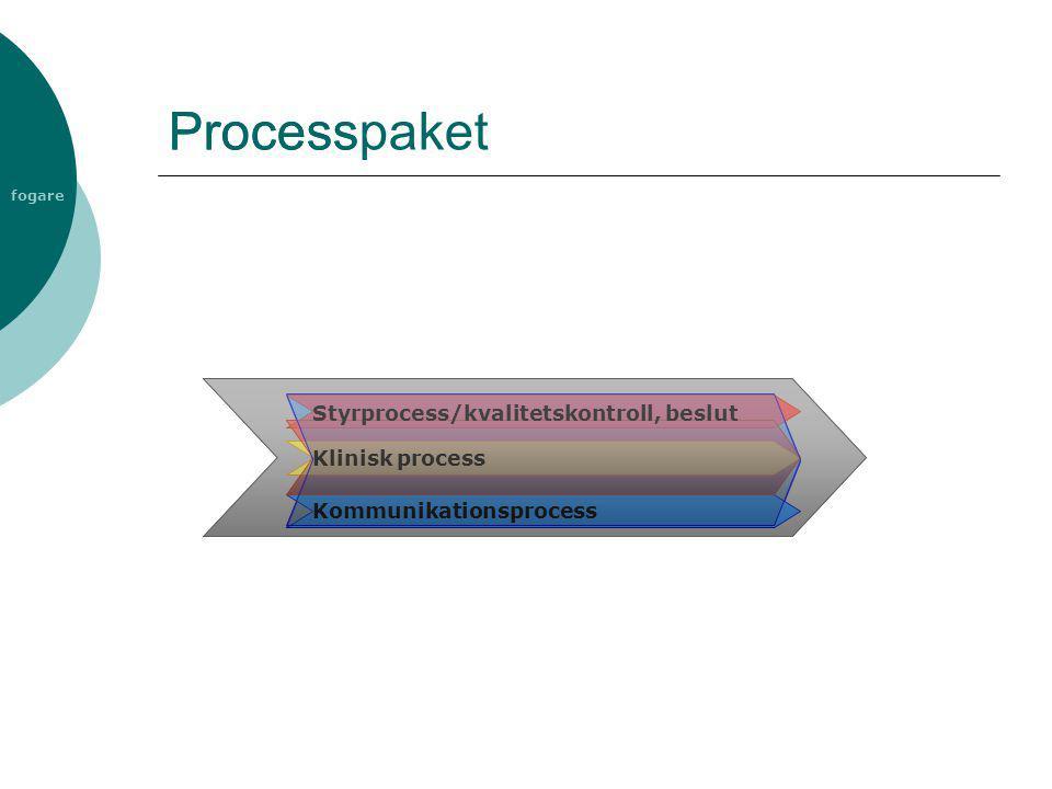 Process Processpaket Styrprocess/kvalitetskontroll, beslut