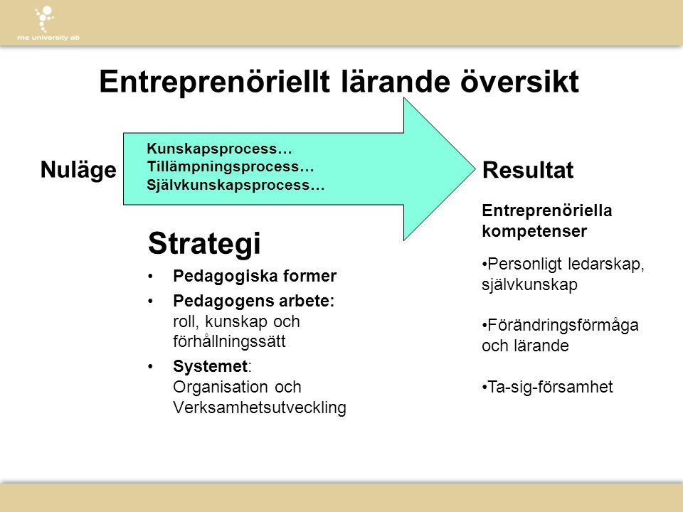 Entreprenöriellt lärande översikt