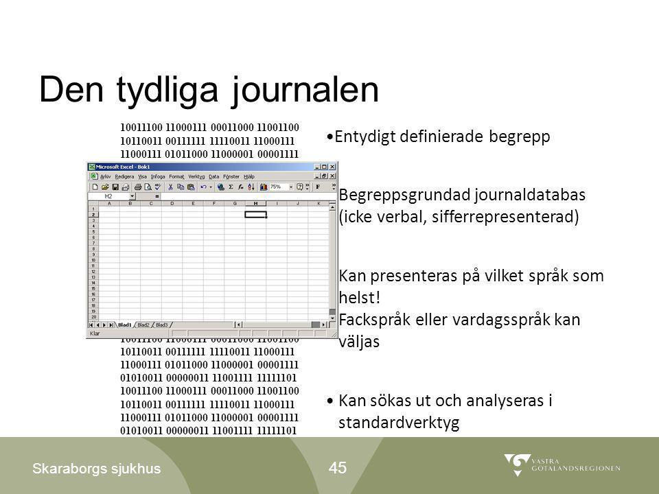 Den tydliga journalen Entydigt definierade begrepp