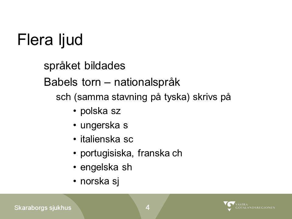 Flera ljud språket bildades Babels torn – nationalspråk