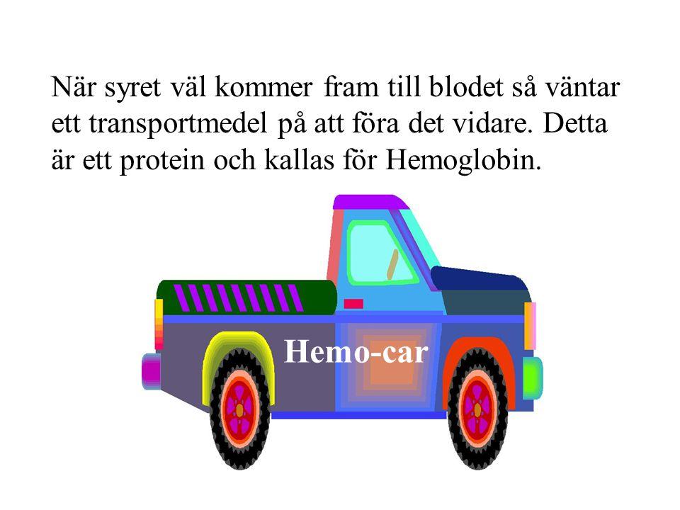 1 Hemo-car När syret väl kommer fram till blodet så väntar