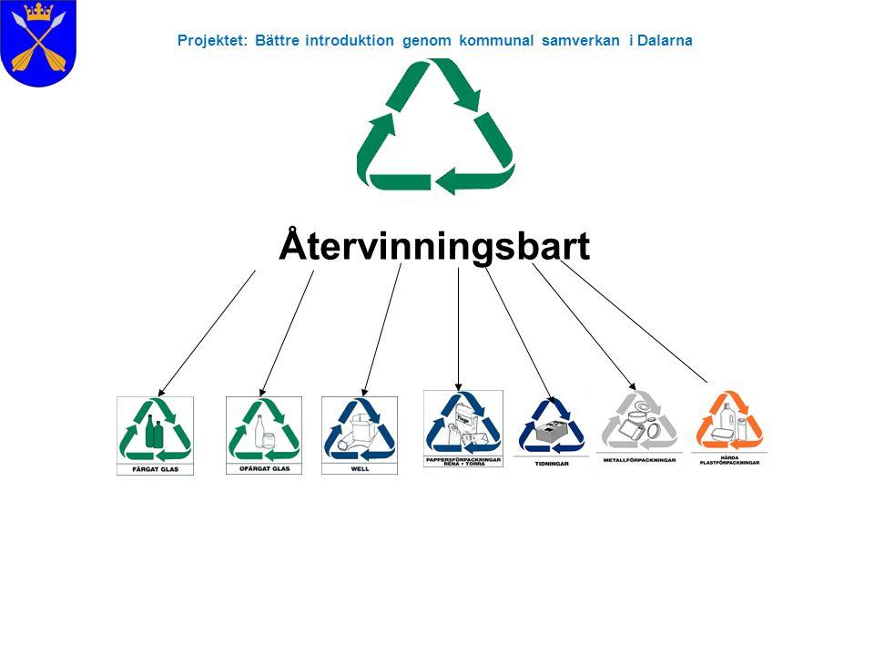 Projektet: Bättre introduktion genom kommunal samverkan i Dalarna