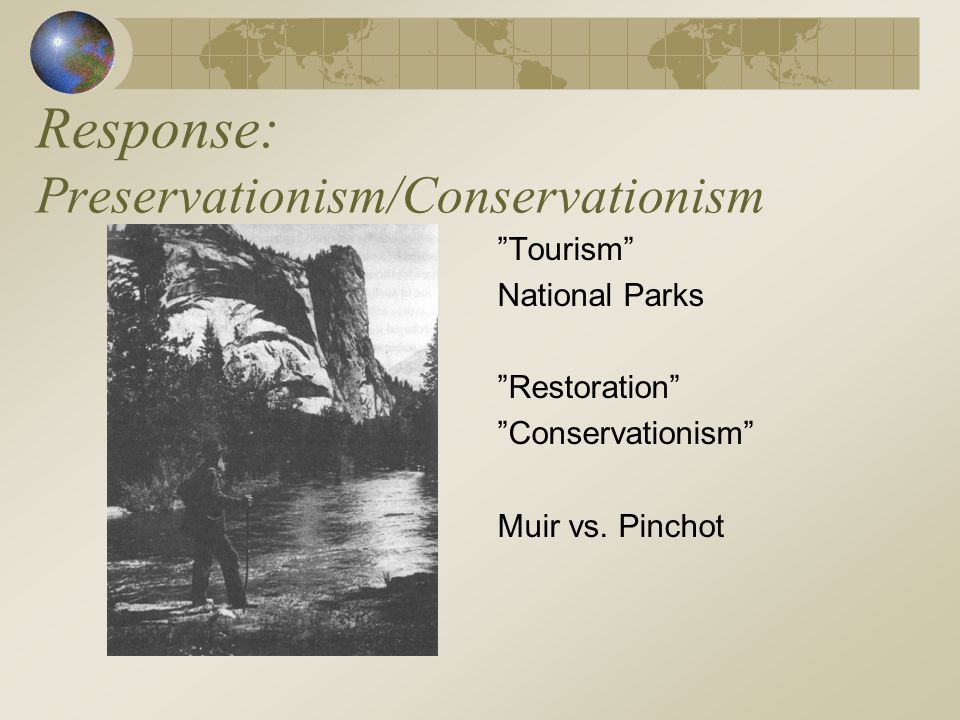 Response: Preservationism/Conservationism