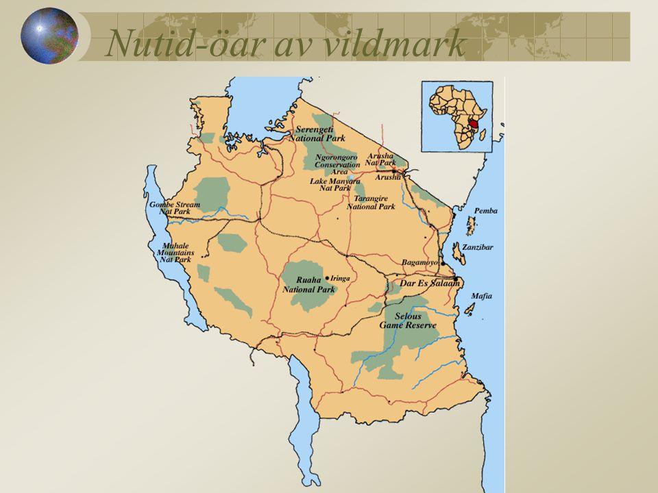 Nutid-öar av vildmark