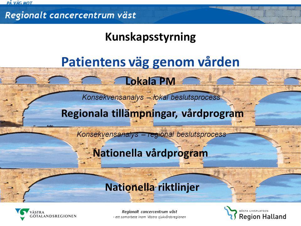 Patientens väg genom vården