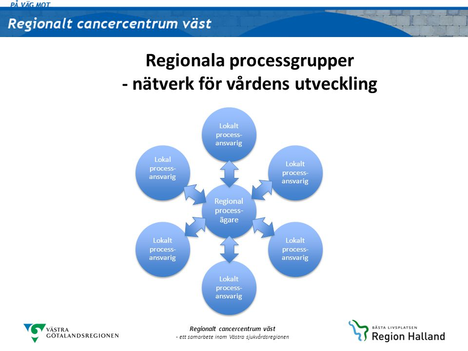 Regionala processgrupper - nätverk för vårdens utveckling
