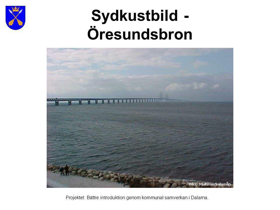 Sydkustbild - Öresundsbron