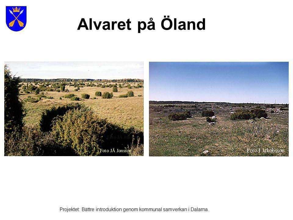 Alvaret på Öland Projektet: Bättre introduktion genom kommunal samverkan i Dalarna.
