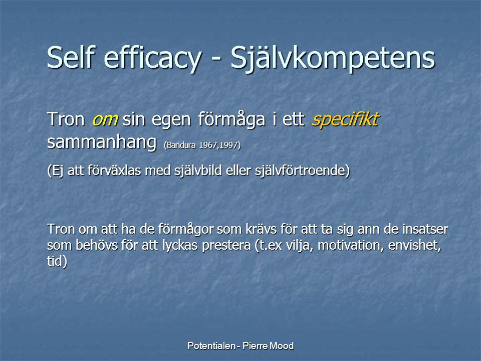 Self efficacy - Självkompetens