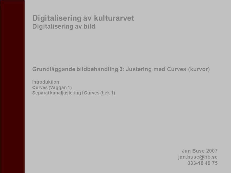 Digitalisering av kulturarvet