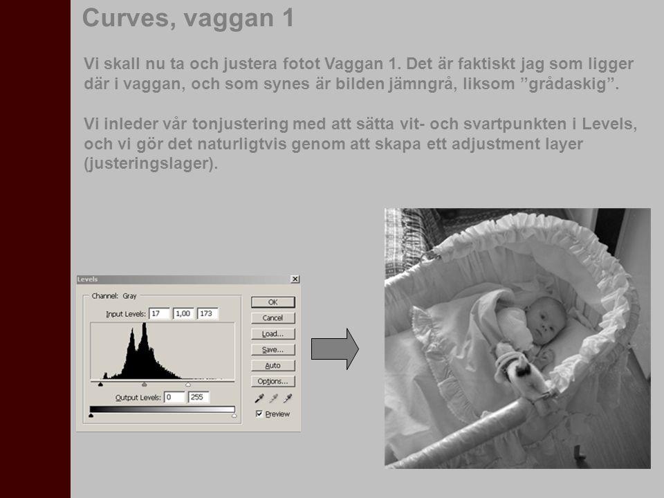 Curves, vaggan 1