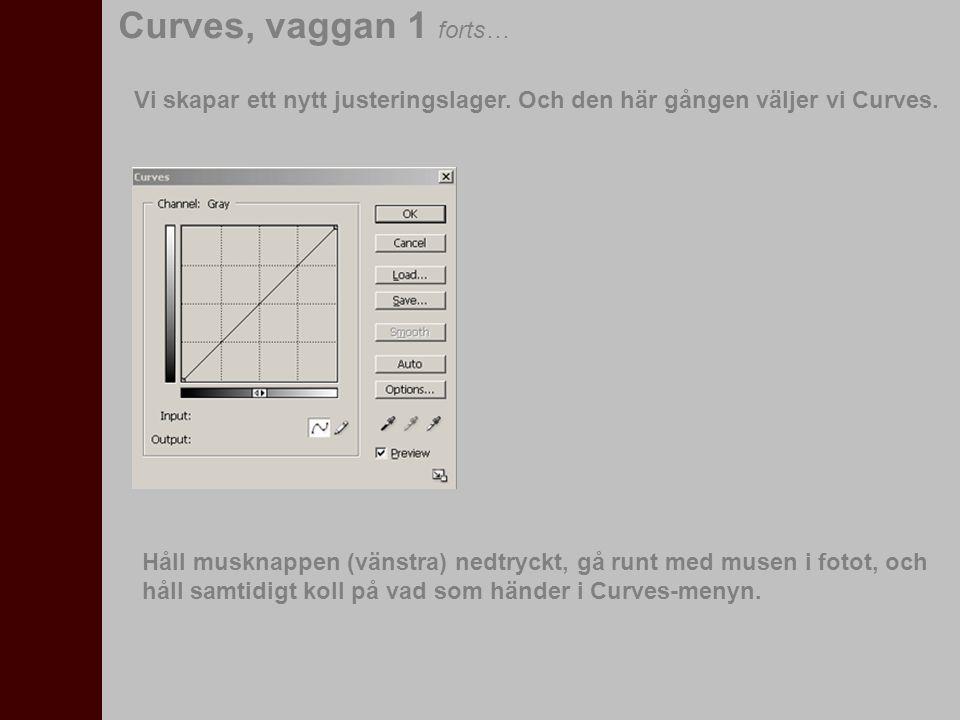 Curves, vaggan 1 forts… Vi skapar ett nytt justeringslager. Och den här gången väljer vi Curves.