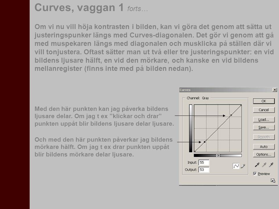 Curves, vaggan 1 forts…