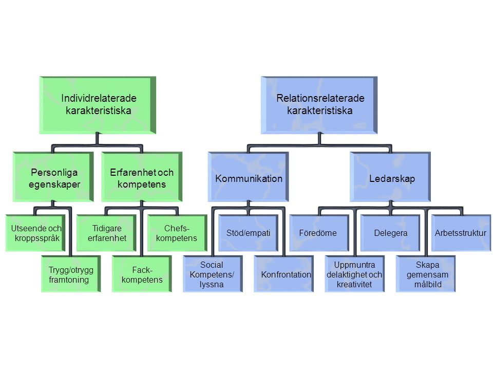 Individrelaterade karakteristiska Relationsrelaterade karakteristiska