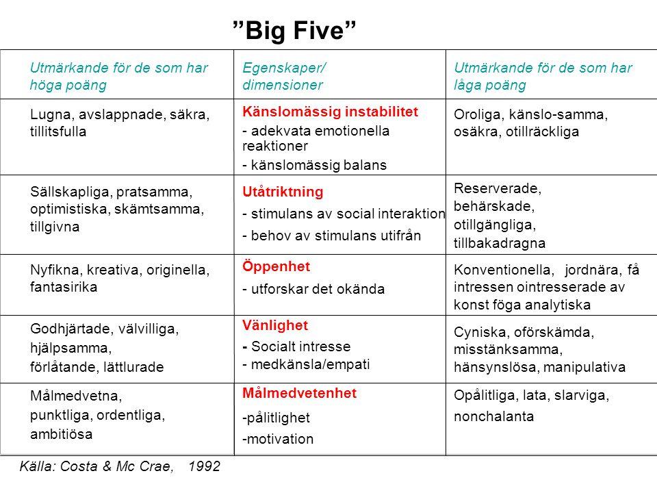 Big Five Utmärkande för de som har höga poäng