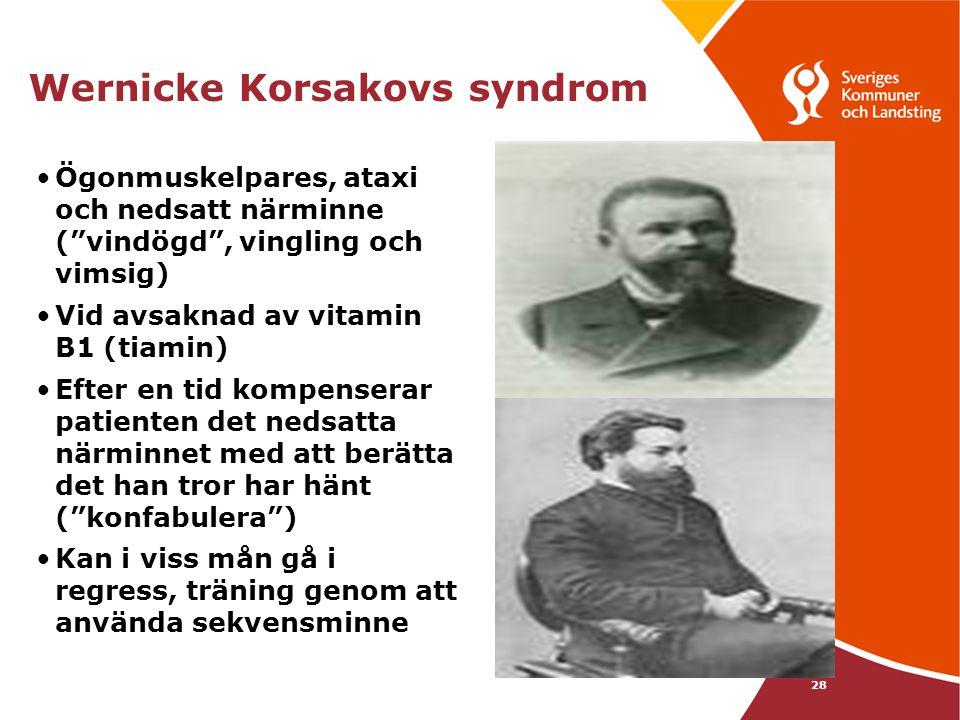 Wernicke Korsakovs syndrom