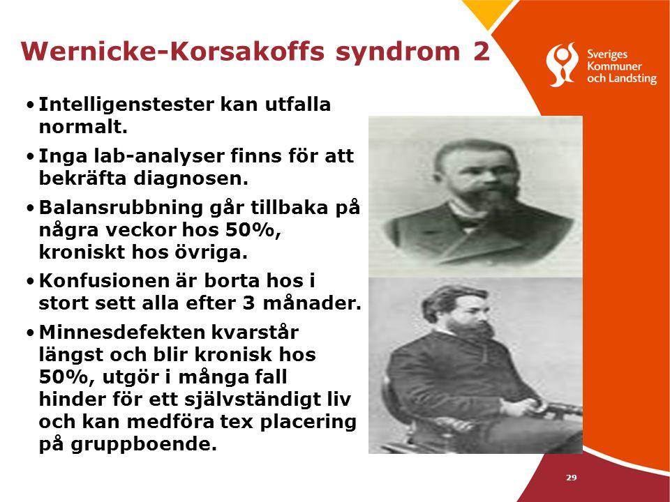 Wernicke-Korsakoffs syndrom 2