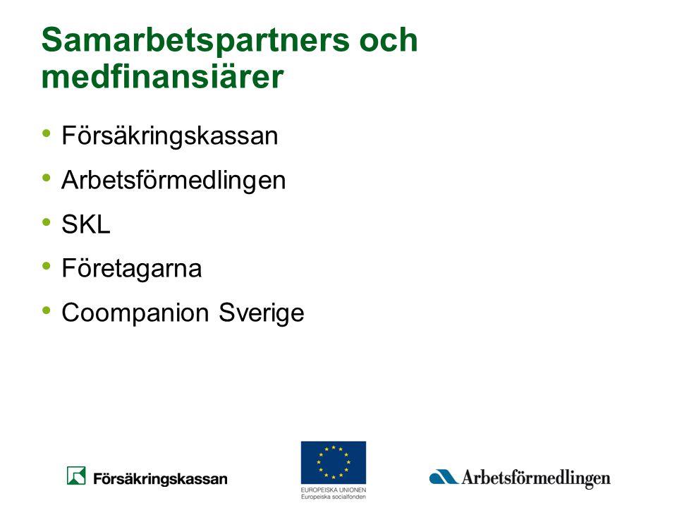 Samarbetspartners och medfinansiärer
