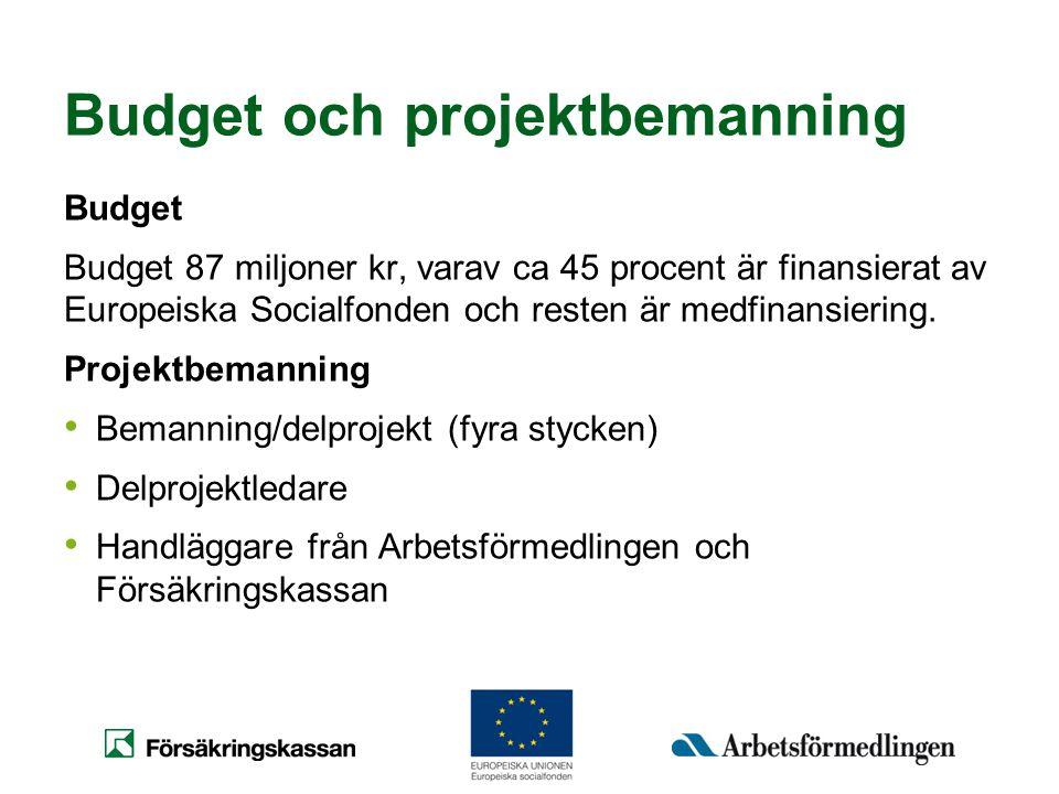 Budget och projektbemanning