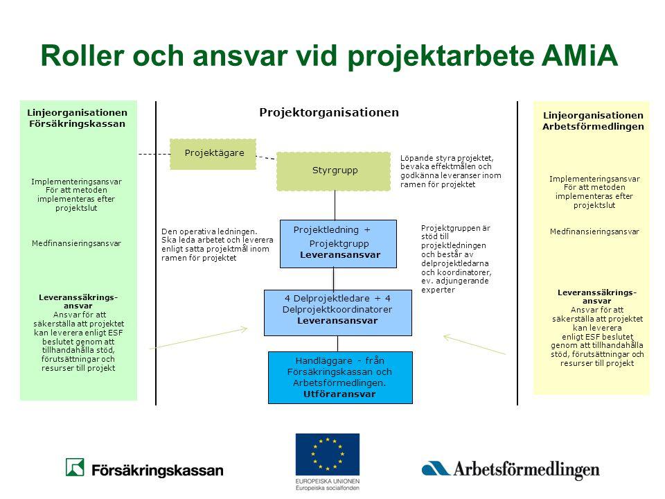 Roller och ansvar vid projektarbete AMiA