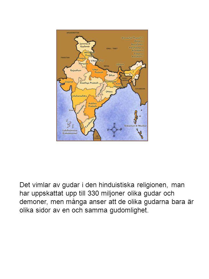Det vimlar av gudar i den hinduistiska religionen, man har uppskattat upp till 330 miljoner olika gudar och demoner, men många anser att de olika gudarna bara är olika sidor av en och samma gudomlighet.