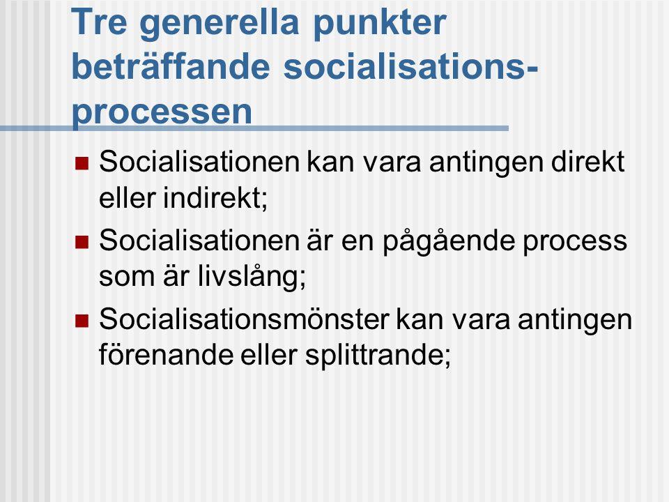 Tre generella punkter beträffande socialisations-processen