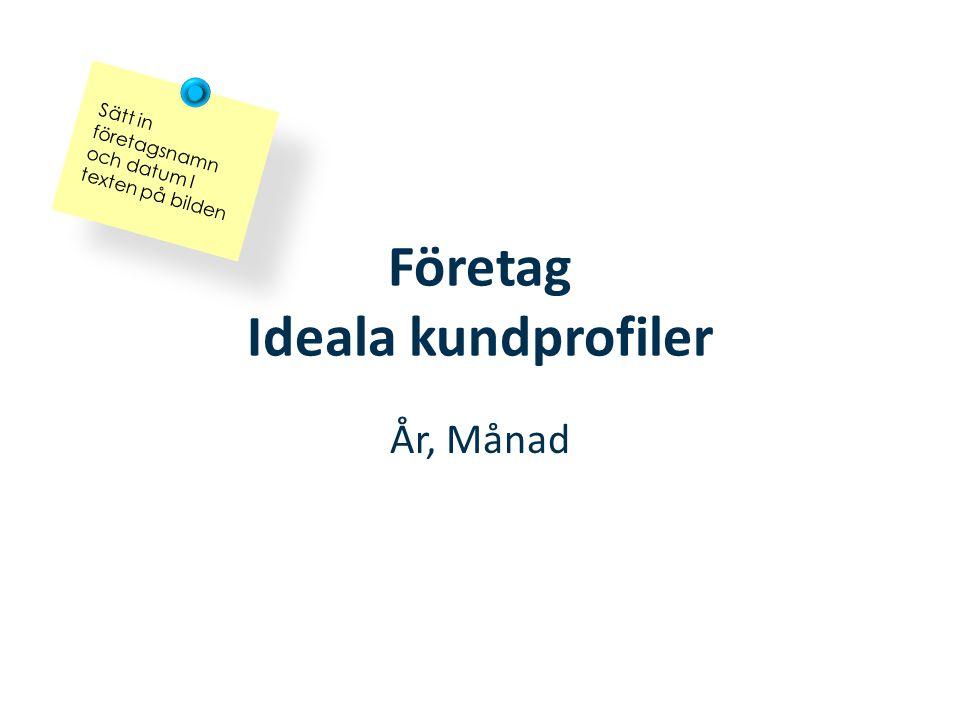 Företag Ideala kundprofiler