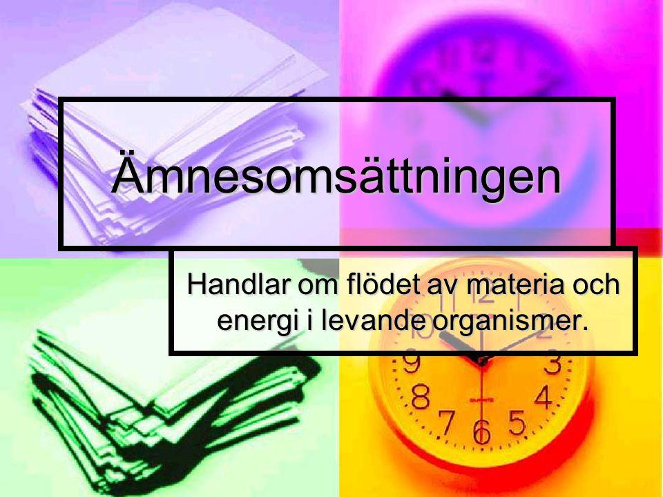 Handlar om flödet av materia och energi i levande organismer.