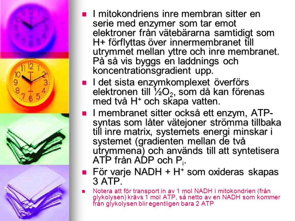 För varje NADH + H+ som oxideras skapas 3 ATP.