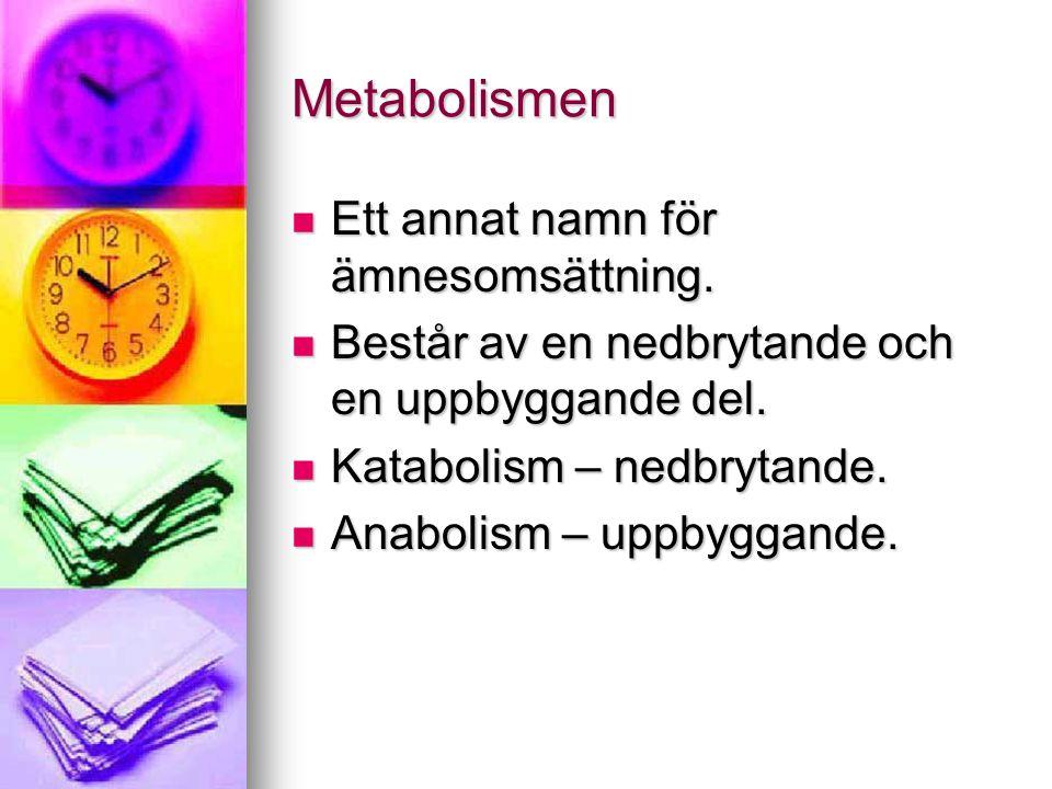 Metabolismen Ett annat namn för ämnesomsättning.