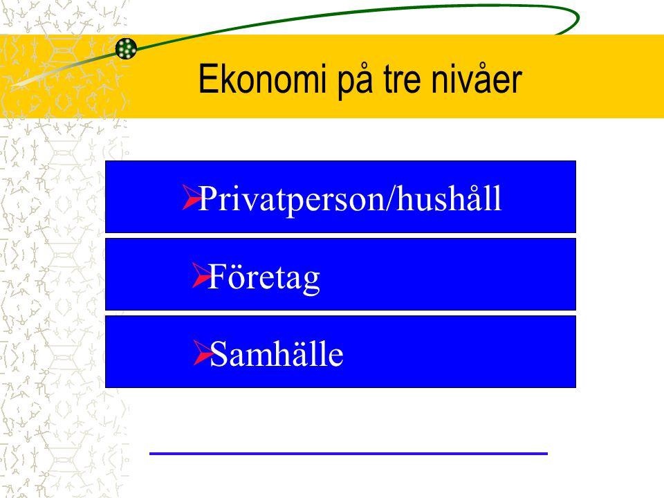 Privatperson/hushåll