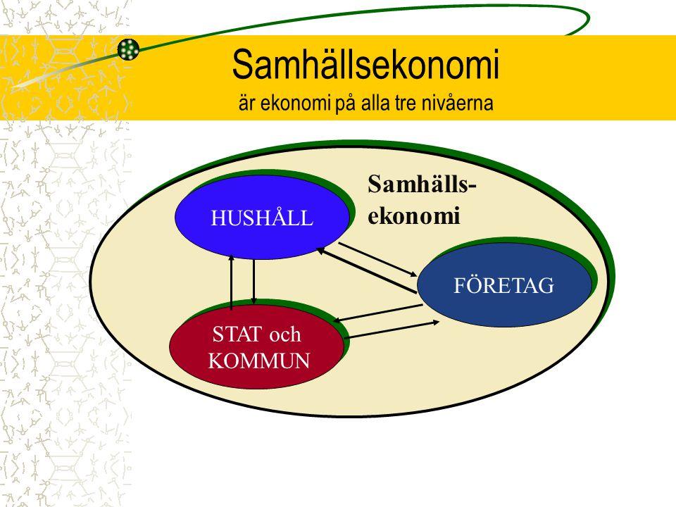 Samhällsekonomi är ekonomi på alla tre nivåerna