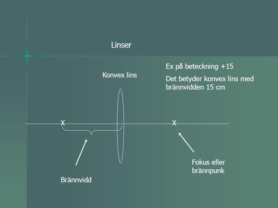 Linser Ex på beteckning +15