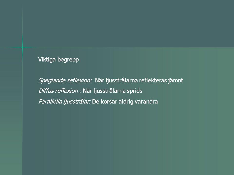 Viktiga begrepp Speglande reflexion: När ljusstrålarna reflekteras jämnt. Diffus reflexion : När ljusstrålarna sprids.