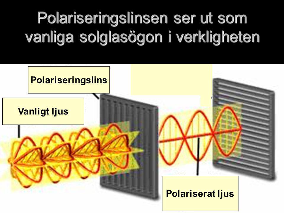 Polariseringslinsen ser ut som vanliga solglasögon i verkligheten
