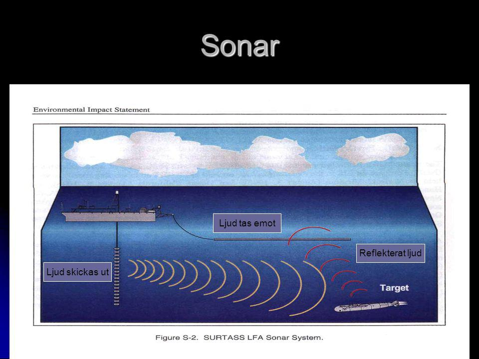 Sonar Ljud tas emot Reflekterat ljud Ljud skickas ut