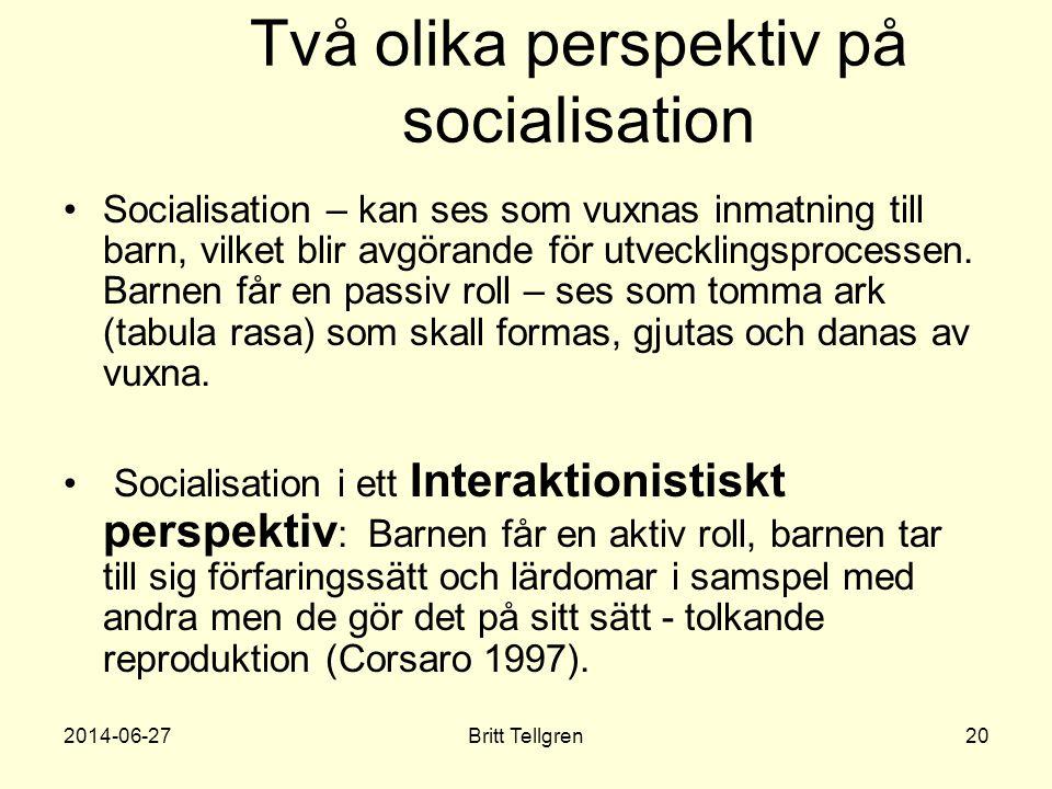Två olika perspektiv på socialisation