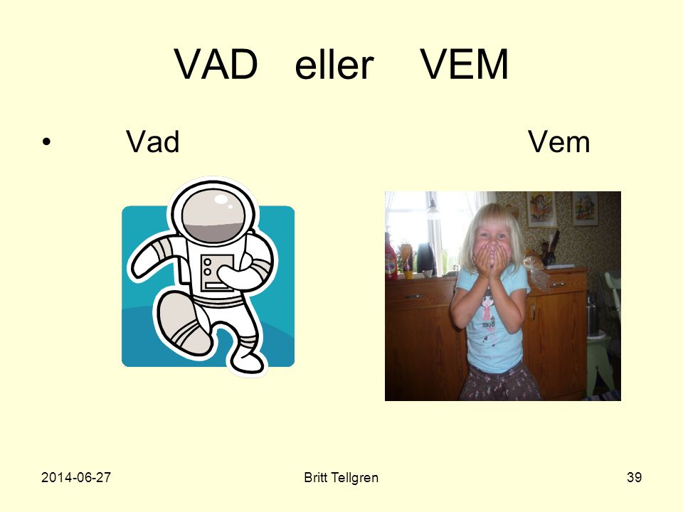 VAD eller VEM Vad Vem 2017-04-03 Britt Tellgren