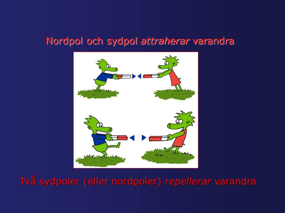 Nordpol och sydpol attraherar varandra