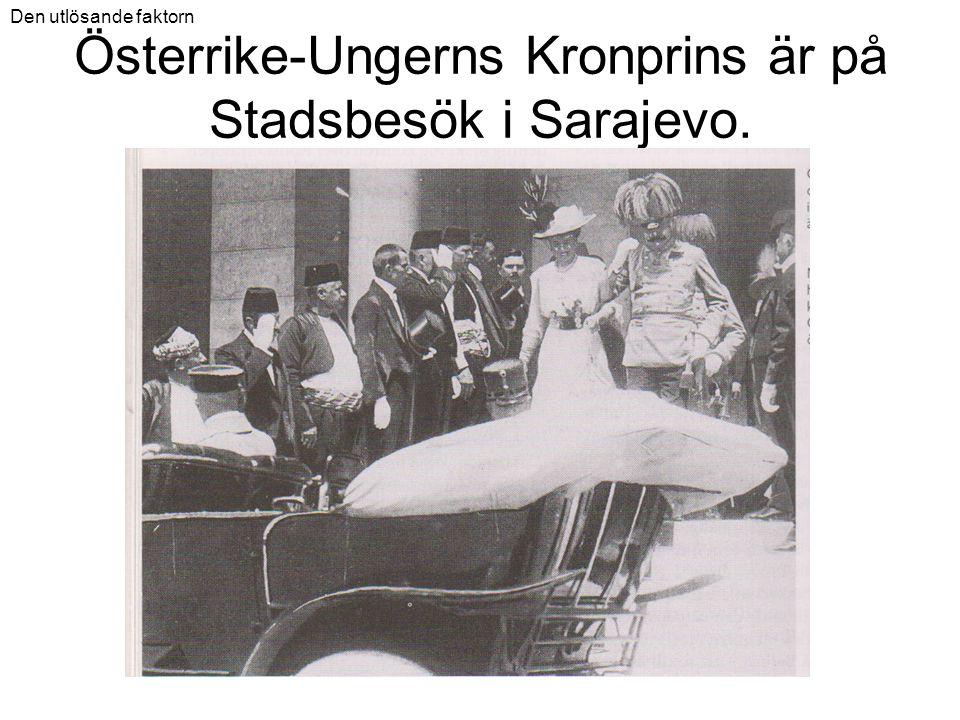 Österrike-Ungerns Kronprins är på Stadsbesök i Sarajevo.