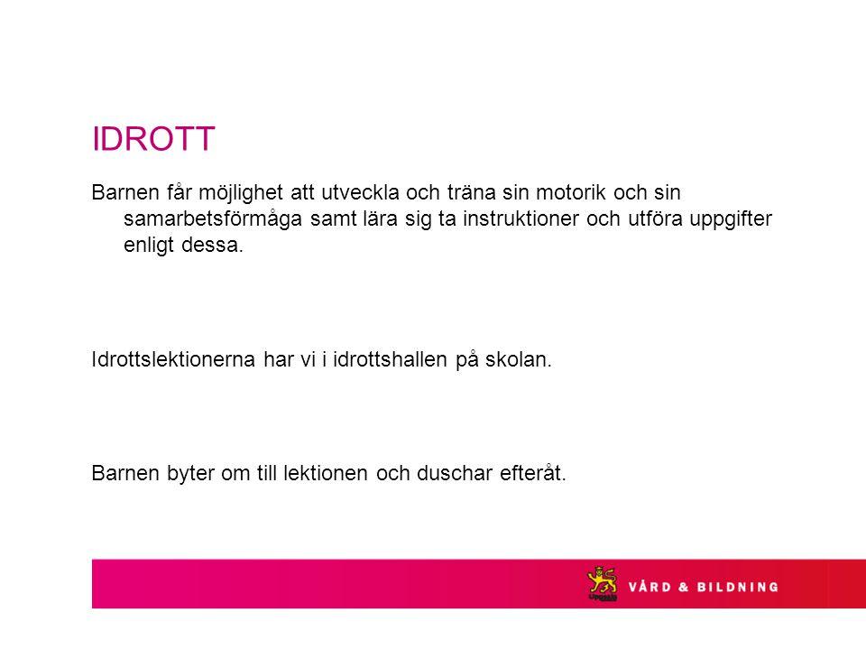 IDROTT