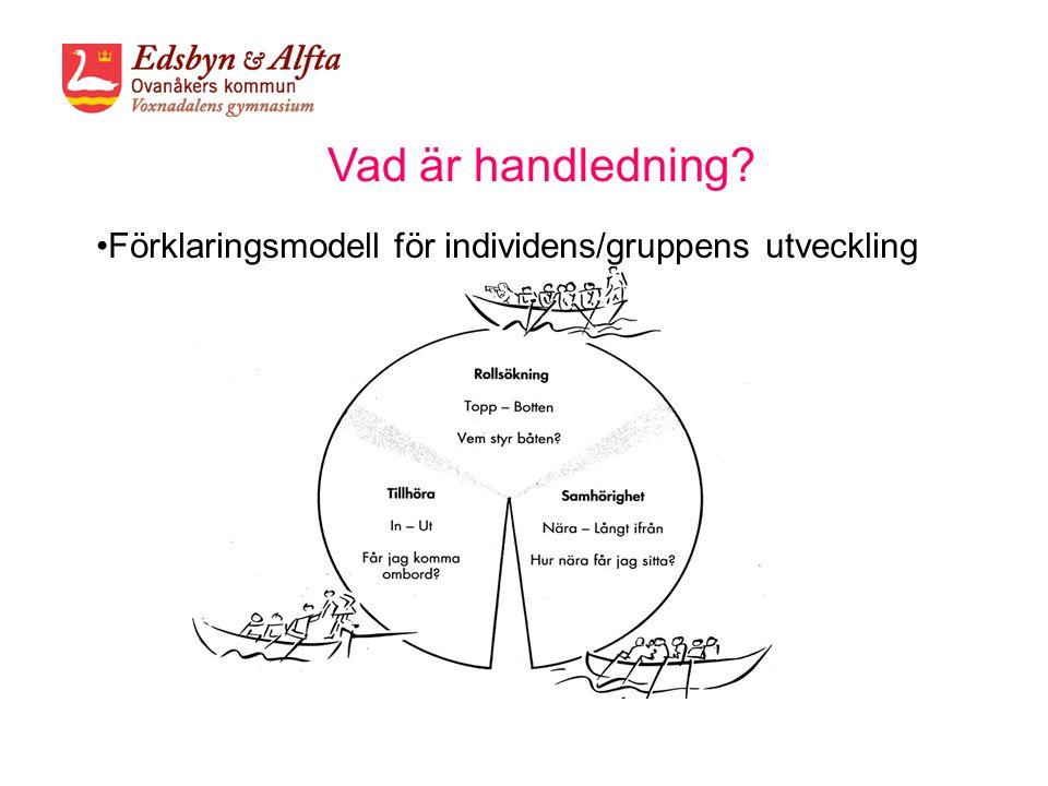 Förklaringsmodell för individens/gruppens utveckling