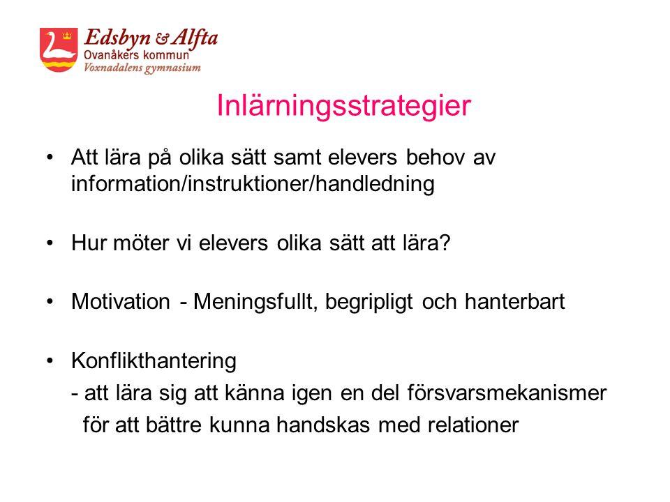 Inlärningsstrategier