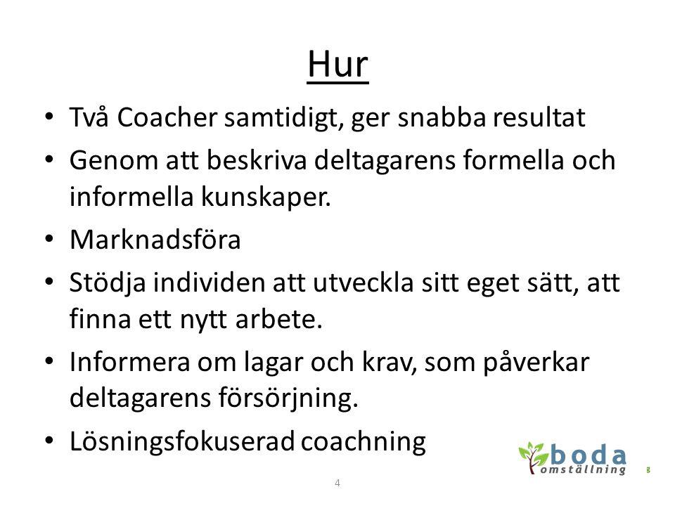 Hur Två Coacher samtidigt, ger snabba resultat