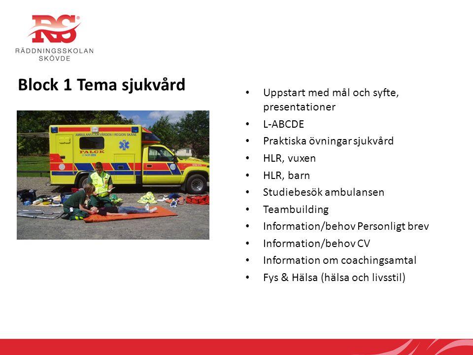 Block 1 Tema sjukvård Uppstart med mål och syfte, presentationer