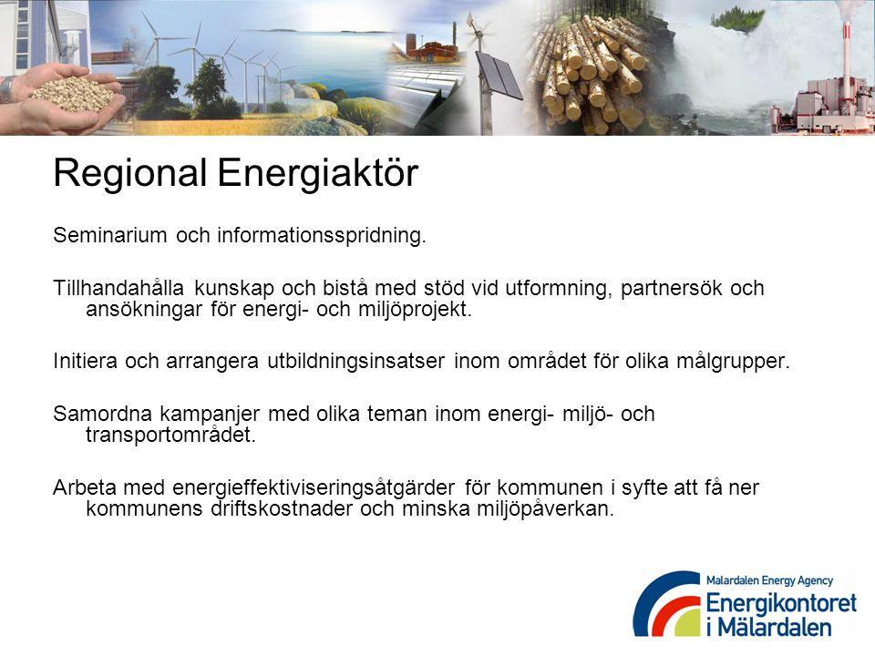 Regional Energiaktör Seminarium och informationsspridning.