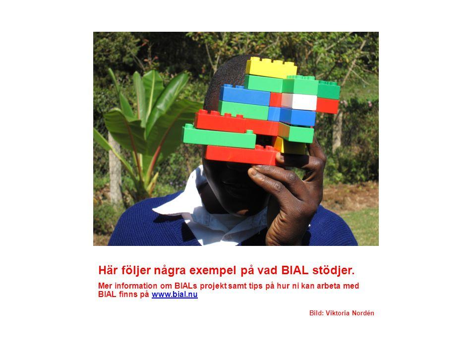 Här följer några exempel på vad BIAL stödjer.